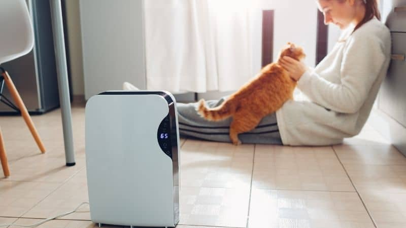Philips Air Purifier Review – Excellent Quality at Low Price