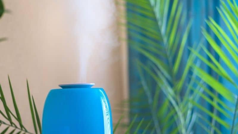 Best Air Purifier Under 20000 – Get Rid of Air Pollutants