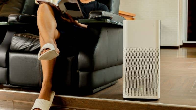 Coway vs Philips Air Purifier – Comparing the Features
