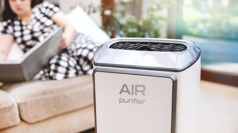 Honeywell vs Coway Air Purifier – Which One to Pick?