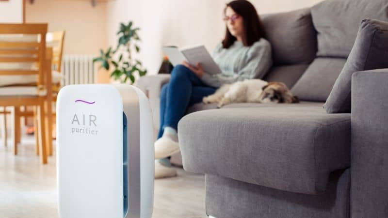 Honeywell vs Philips Air Purifier – Know the Differences